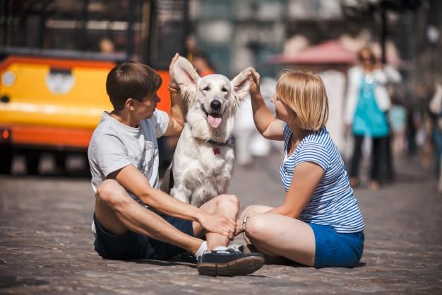 un fin de semana con tu perro en Madrid
