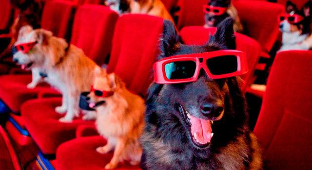 DÍA DEL ORGULLO FRIKI: Lista de perros del cine y la TV
