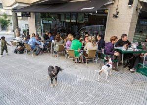 S&L bar Vigo