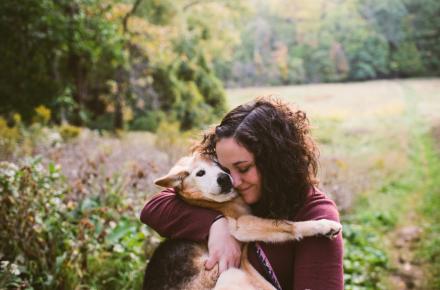 aprender de tu perro mimos