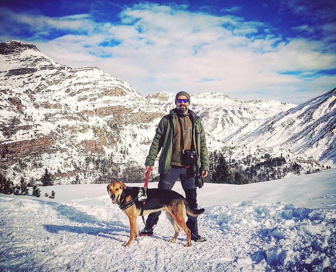 llevar a tu perro a la nieve pirineo aragonés