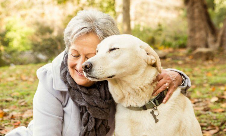 DÍA DEL ABUELO: ¿Sabías que los perros mejoran la salud de los ancianos?